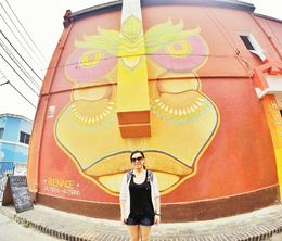 Lots of street art around Valaparaiso , Joanna F - March 2015
