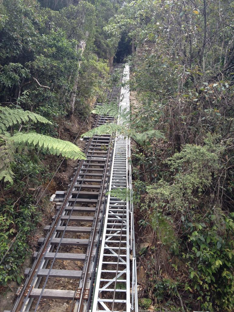 a view of the incline from down into the rain forest - Sydney