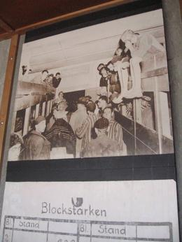 Photo of Munich Dachau Concentration Camp Memorial Small Group Tour from Munich Bunks