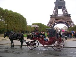 Photo of Paris Romantic Horse and Carriage Ride through Paris In front of the Eiffel Tower #1