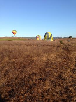 Photo of Napa & Sonoma Napa Valley Hot-Air Balloon Ride with Sparkling Wine Brunch Landed