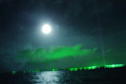 Photo of Reykjavik Northern Lights Viewing Cruise from Reykjavik Northern Lights