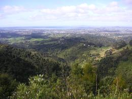 Photo of Auckland Waitakere Ranges Wilderness Experience Eco-Tour from Auckland View of Auckland from a mountain top