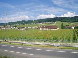 Photo of Geneva Day Trip to Gruyères including Golden Panoramic Express Train Greeneries