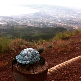 My daughter's turtle souvenir on top of the volcano , Pamela R - August 2015