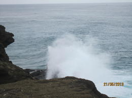 Photo of Oahu Oahu Grand Circle Island Day Tour with Dole Plantation blow hole