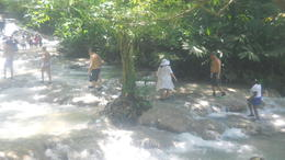 Photo of Montego Bay Dunns River Falls and Ocho Rios Shopping Tour Climbing Dunns River Falls