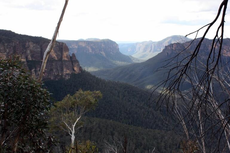 Grose Valley, Blue Mountains - Sydney