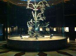 The largest money tree , John J - June 2012