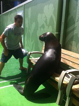 Photo of St Thomas Sea Lion Encounter at Coral World Ocean Park Omar on the bench