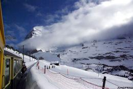 Train on the left, skiers on the right, as we head toward Jungfrau. What a glorious day!, Gary G - March 2009