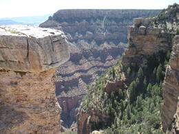 Such a depth to the canyon, charley - June 2011