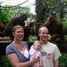 Photo of Singapore Singapore Zoo Morning Tour with optional Jungle Breakfast amongst Orangutans Jungle Breakfast photo shot