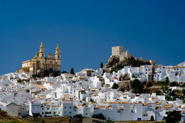 Photo of Seville Jerez and Cadiz Day Trip from Seville Medieval White Village, Cadiz