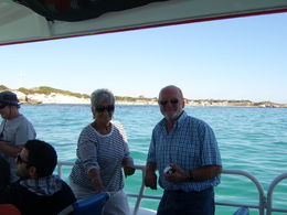Slowed down to see the dolphins , Rob M - April 2015