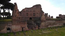 Photo of Rome Small-Group Ancient Rome and Colosseum Tour: Underground Chambers, Arena and Upper Tier Palatine Hill/Roman Forum