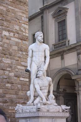Michael Angelo certainly knew how to capture the essence of the body., Andrew L - April 2010