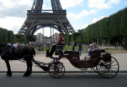 Photo of Paris Romantic Horse and Carriage Ride through Paris Paris- Carriage Ride-033