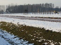 Railroad tracks at Birkenau , Patricia - February 2015