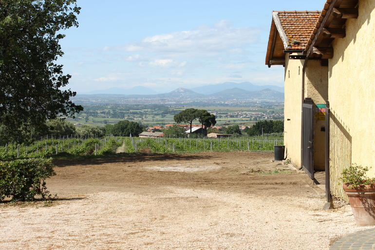 A view from the vineyard - Rome