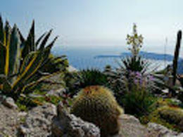 Photo of Monaco Small-Group Trip to Cannes and Antibes from Monaco Eze3.JPG