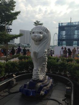 The Merlion,the orchid gardens, the flyer it was a great tour! Highly recommend! , Robert S - February 2015