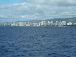 Photo of Oahu Oahu Whale Watching Cruise Waikiki Beach