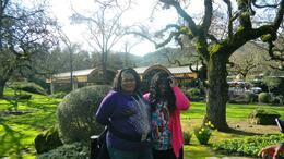Photo of   Sisters in nappa valley