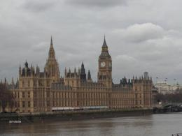 River Thames and Parliment , STEFANIE S - March 2011