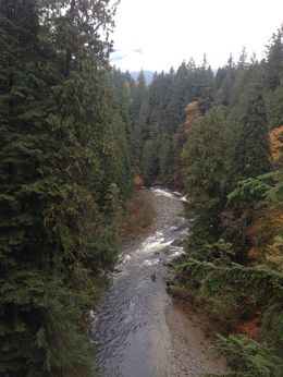 On the Capilano Suspension Bridge , Areeya - November 2015