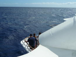 Photo of Oahu Oahu Whale Watching Cruise Our boat - just like you're floating!
