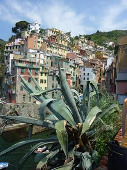 A view of one of the Cinque Terre villages , Robin G - June 2012