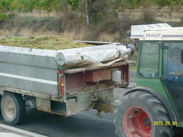 One of many wagons we saw heading from the vineyard to the winery. , Howard C - October 2013