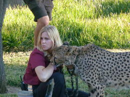 Photo of San Diego San Diego Zoo Safari Park After Jaguar Run