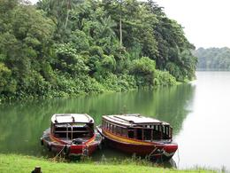 Photo of Singapore Singapore Zoo Breakfast with Orangutans Boats on lake