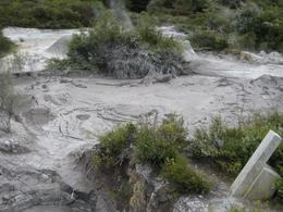 Photo of Auckland Waitomo Caves and Rotorua Day Trip from Auckland Bubbling Mud