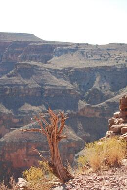 No pictures can grasp the depth and magnitude of the Canyon. It's just magnificent. - October 2009