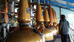 Photo of   Islay Whisky Tour