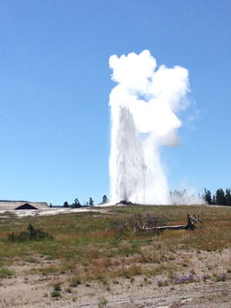 Old Faithful was going off at the same time The Beehive Geyser was going off. This doesn't happen all the time as The Beehive Geyser doesn't erupt as often as Old Faithful. , Paige K - July 2015