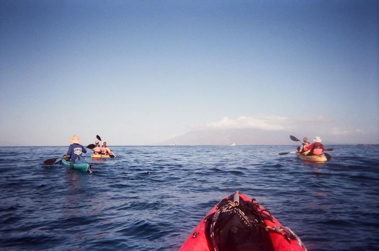 Easy Kayaking - Maui