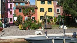 Photo of Florence Skip the Line: Florence Accademia and Uffizi Gallery Tour Island of Burano