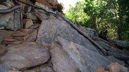 Explore Aboriginal Rock Paintings at the Kakadu National Park. - August 2011