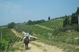 Photo of Florence Horse Riding in Chianti Day Trip from Florence Wes Horseback Riding