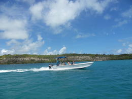 Photo of Antigua and Barbuda Island Safari and Stingray Fantasy Antigua Antigua Präsi (608)
