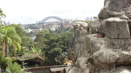 Photo of Sydney Sydney Taronga Zoo General Entry Ticket and Wild Australia Experience Great Views of the bridge!