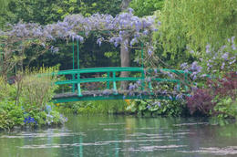 Photo of Paris Giverny and Monet's Garden Bike Tour The Japanese Footbridge in Monet's Gardens