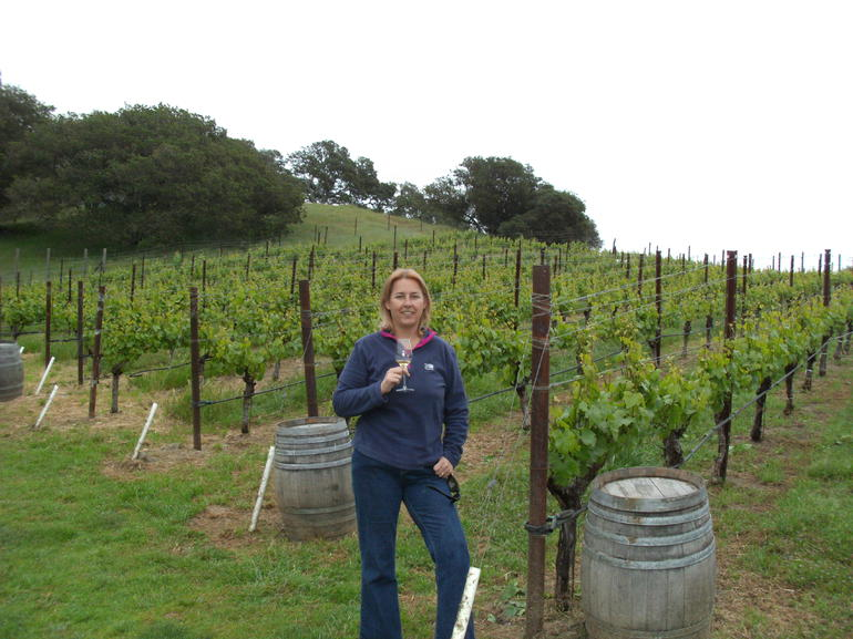 Wine tasting in the vineyard - San Francisco
