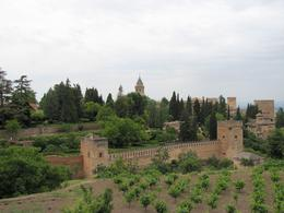 View of the Alhambra from the Generalife Gardens. , Lizette G - May 2011