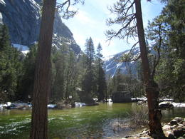Photo of San Francisco Yosemite National Park Day Trip from San Francisco Wilderness shot