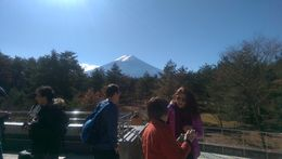 Photo of Tokyo Mt Fuji and Aokigahara Forest Day Trip from Tokyo Fuji from 1st Stop